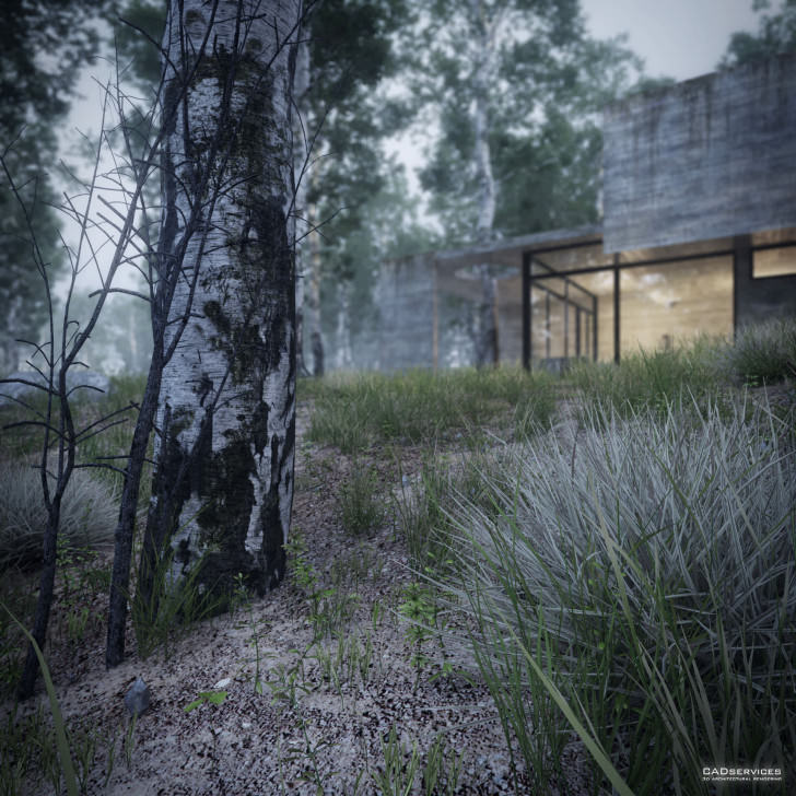 31-house-in-the-forest-view-9-juan-k-torres