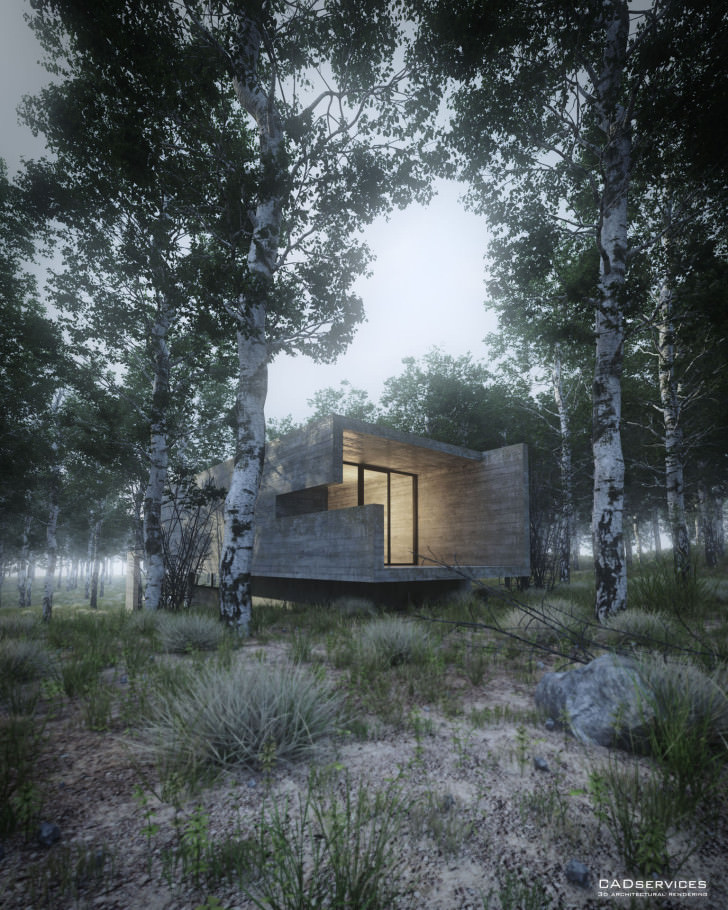 33-house-in-the-forest-view-3-juan-k-torres